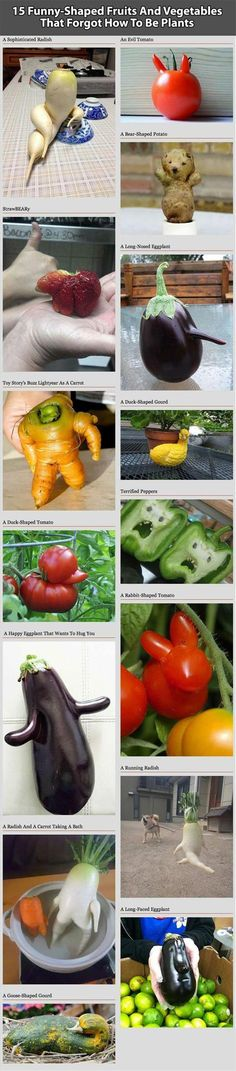 Fruits And Vegetables That Forgot How To Be Plants.