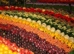 Healthy fruit and veg snacks for school kids - Ontario program expands