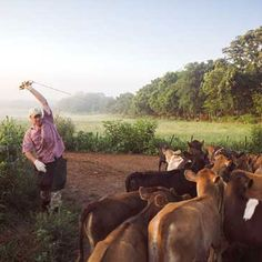 Rotational Grazing for Pastured Livestock - Homesteading and Livestock - MOTHER EARTH NEWS