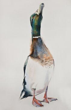 duck#55 watercolor on paper 20*30 by Olga Flerova