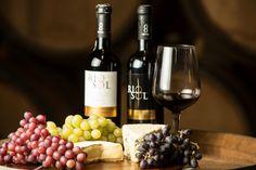 Nossos vinhos são marcados pela tipicidade Nordestina, mas num estilo internacional e de qualidade inquestionável respeitando os padrões mais rigorosos.