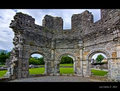 The Old Mellifont Abbey, Tullyallen (Co. Louth)