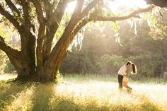 sunlit engagement session | Courtney Dox
