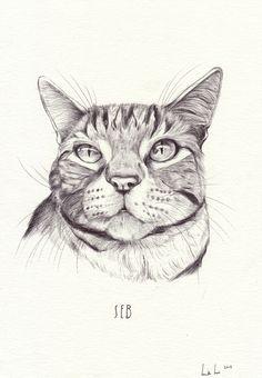 dibujo de Henrietta Harris