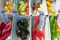 Das ist nur eine kleine Auswahl ... #chilifestival #archenoah #enricosreisenotizen.eu Chili, Stuffed Peppers, Events, Vegetables, Food, Self, Chilis, Veggies, Vegetable Recipes
