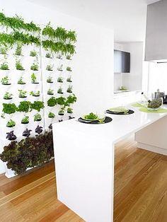 MiniGarden is een hip en innovatief systeem van modulaire plantenbakken voor het creëren van een groene sfeer dat je bereikt door niet horizontaal, maar juist verticaal te tuinieren.   @Plantenbak_com