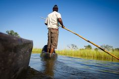 Want to experience the Okavango Delta in Botswana? Here are the best ways to do it - as well as where to stay, and when to visit. Okavango Delta, 5 Ways, Places To Visit, Southern, Africa, Magazine, Travel, Viajes, Destinations
