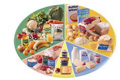 dinh dưỡng cho bệnh ung thư  http://www.9appsapk.com/ http://www.thuocvidatoxcuba.com.vn/ http://dichvusuachua247.com/dv-sua-chua-do-go/