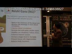 proprieta ganoderma - per informazioni, sui prodotti con ganoderma, chiama il 3496638827 o visita il sito htttp://www.prodotticonganoderma.it