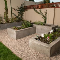 raised beds - wonder if I can do this with my cinderblocks?