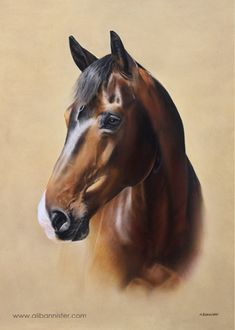 CALYPSO, pastel on pastel card by Ali Bannister. Commissioned by Lizzie Coltman. For limited edition prints and information on commissions see: www.alibannister.com
