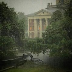 """Baylor University on a rainy April day. // """"There is nothing more wonderful than. - Back to School Dark Green Aesthetic, Nature Aesthetic, Slytherin Aesthetic, Dark Paradise, Pretty Pictures, Aesthetic Pictures, Twilight, Light In The Dark, Beautiful Places"""