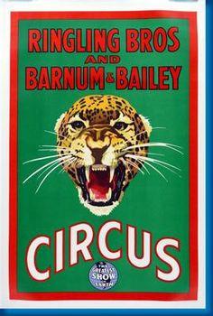Ringling Bros. Circus Leopard Photo Mug Gourmet Tea Gift Basket