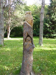 Trunks, Plants, Nature, Drift Wood, Stems, Tree Trunks, Plant, Planting, Planets