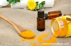 Using turmeric in your skin care regime - the benefits