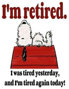 Funny Signs And Sayings Humor Thoughts 25 Ideas Motivacional Quotes, Cute Quotes, Funny Quotes, Snoopy Quotes Love, I Wish Quotes, Flaws Quotes, Funny Humour, Drunk Humor, Ecards Humor