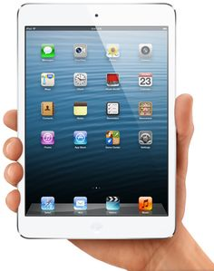 i pad mini...broke my ipad 3.....loved Chris's ipad mini....hoping to get one for my bday in April