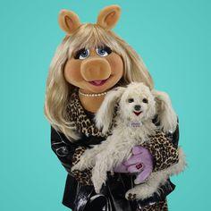 Miss Piggy and Foo-foo Miss Piggy Muppets, Die Muppets, Kermit And Miss Piggy, Kermit The Frog, Danbo, Jim Henson, Cultura Pop, Muppet Babys, Dog Sounds