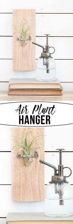 Diy Crafts Ideas : A DIY Air Plant Hanger that is great to display air plants throughout your home.
