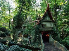 森の中にある小さな家。自然の美しさと人工的な美しさが見事に調和しています。
