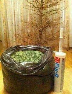 Doe het zelf kerstboom Do it yourself Christmas Tree