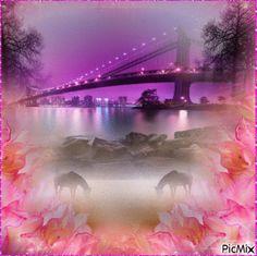 Animated Photo