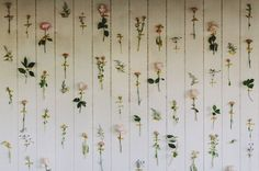 DIY Wall Decor Ideas: Decorating with Flowers and Tape, take the flowers from mothers day or from the anniversary and press them into books to make them thin to hang on the walls of the kitchen or on the front of a notebook using this trick