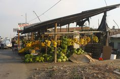 On a highway near Guayaquil, Ecuador: awesome bananas, pineapples, coconuts etc!