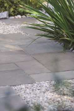 With a stunning overall visual effect, with beautiful colour and veining variations Bradstone Smooth Natural Sandstone Paving in Silver Grey provides a tasteful, refined and elegant garden backdrop. Sandstone Paving Slabs, Paving Stone Patio, Grey Paving, Outdoor Paving, Patio Slabs, Concrete Paving, Gravel Patio, Paving Stones, Outdoor Gardens