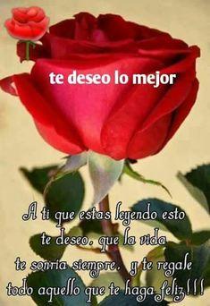 Flores Y Rosas Bonitas Poemas De Amor Amor Stuffed Peppers