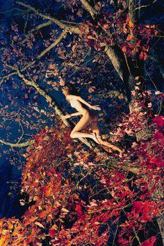 Marieke (Fall Foliage),2011  Ryan Mcginley Photographs