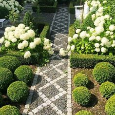 "371 Likes, 6 Comments - Joe Ruggiero (@joeruggiero_collection) on Instagram: ""#garden #classicdesign #gardendesign"""