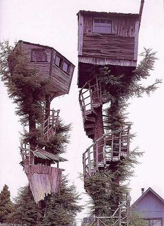 crazy places to live