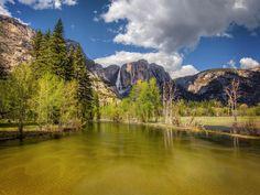 Yellow Colors of Merced River (Yosemite) by Viktor Elizarov