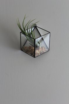 Small Hanging Terrarium Handmade Geometric Modern Glass Wall Mounted Air Plant Succulent Holder Stained Glass Terrarium Hanging Planter Gift
