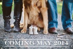 New Ideas for baby announcement shoes life Pregnancy Announcement Shoes, Cute Baby Announcements, Baby Announcement Pictures, Colorado, Erwarten Baby, Pregnant Dog, Baby Blog, Style Blog, Expecting Baby