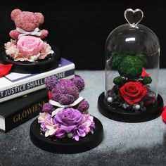 The bear represents your most important person let it be a friend, lover, parents or a life partner the one's stood by your side at difficult times and protected you. This design is inspired by Bear's significance and the admirable beauty of rose. Cute Gifts, Best Gifts, Rose Dome, Forever Flowers, Romantic Night, Christmas Gifts For Women, Glass Domes, Valentine Day Gifts, Christmas Decorations