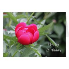 Red Peony Birthday Card - birthday gifts party celebration custom gift ideas diy