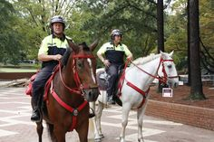 Mounted Police Horses with red tack. - Police Horse Tack