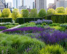 Lurie Garden in Mil Park, Chicago, Illinois