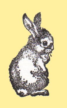 Foxaway Rabbits logo
