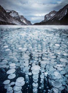 Nouvelles - Un photographe immortalise des bulles de méthane gelées dans un lac en Alberta - MétéoMédia
