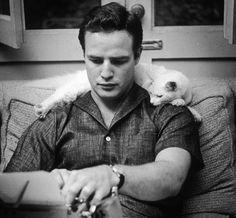 """""""A los hombres (muy hombres) les gustan los gatos"""" http://www.glamour.es/hombres/articulos/a-los-hombres-muy-hombres-les-gustan-los-gatos-20-argumentos-que-desmienten-el-topico/19657"""