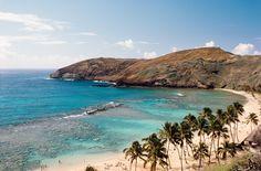 www.WaikikiBeachHouse.com