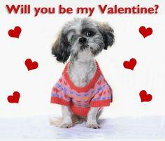 valentine nebraska humane society