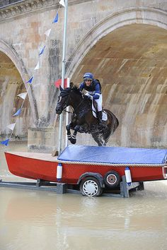 Jock Paget retained his dressage lead by adding just time penalties to his score aboard Clifton Promise. Photo courtesy of Burghley Cross Country Jumps, English Riding, All The Pretty Horses, Show Jumping, Horse Pictures, Horse Photography, Horse Love, Horse Riding, Horseback Riding