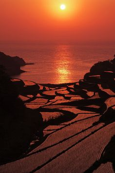 Sunset in rice terraces, Hamanoura, Genkai, Saga, Japan