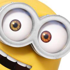 Beautiful eyes Bob
