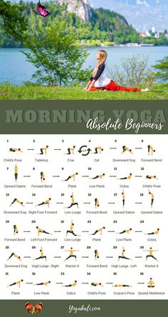 <br> Beginner Yoga Routine, Easy Yoga For Beginners, Beginner Workouts, Full Body Stretching Routine, Beginner Yoga Poses, Intermediate Yoga Poses, Daily Yoga Routine, Flexibility Routine, Full Body Yoga Workout