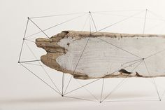 studio note frame driftwood + flowers in polygonal skeletons